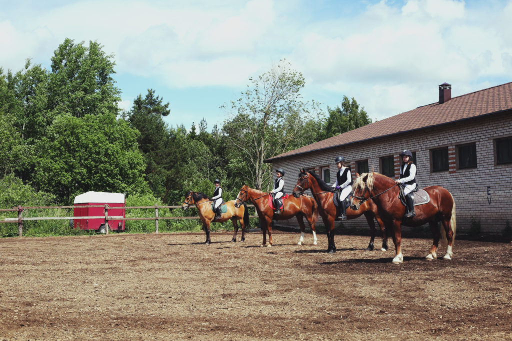 конно-спортивная секция